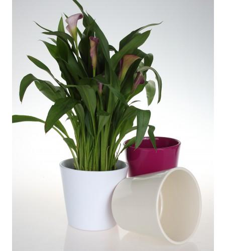 Osłonka ceramiczna 440 - (rozmiary od 12cm do 40cm)